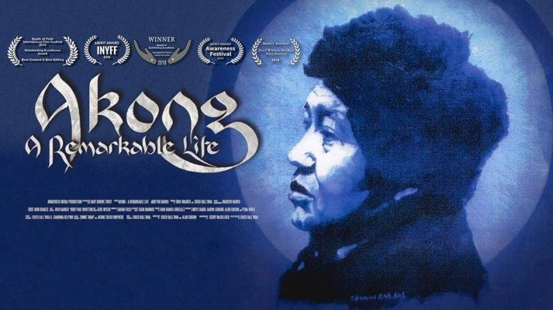 Documental A Remarkable Life